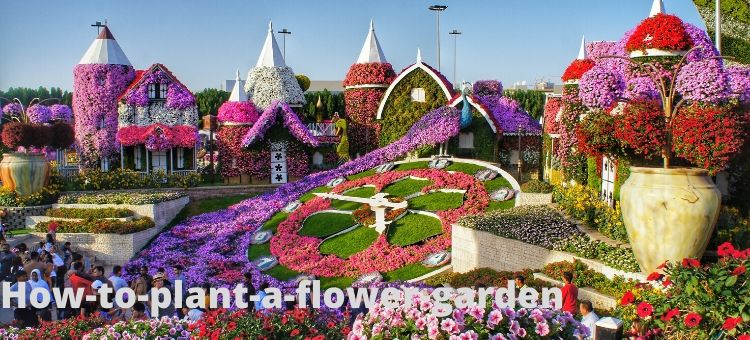 How-to-plant-a-flower-garden