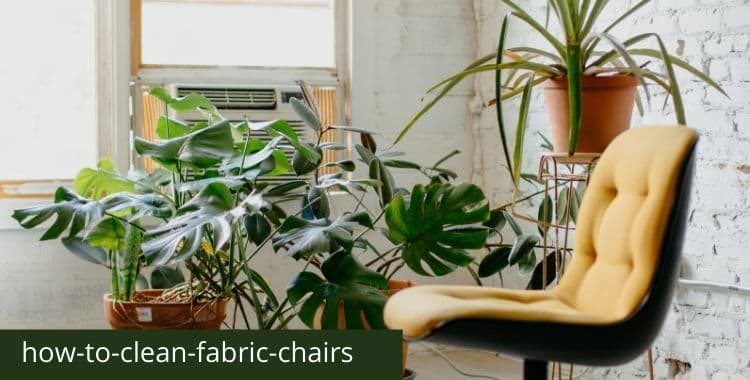 How To Clean Fabric Chairs