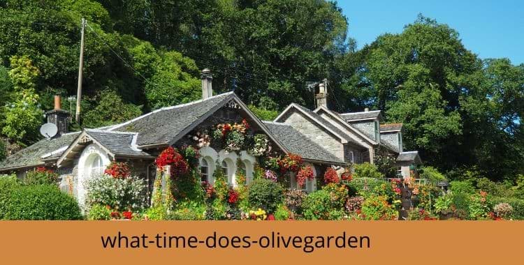 what-time-does-olivegarden