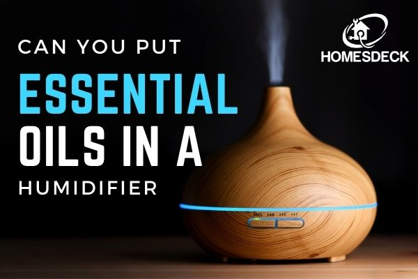 Can you put essential oils in a humidifierCan you put essential oils in a humidifier