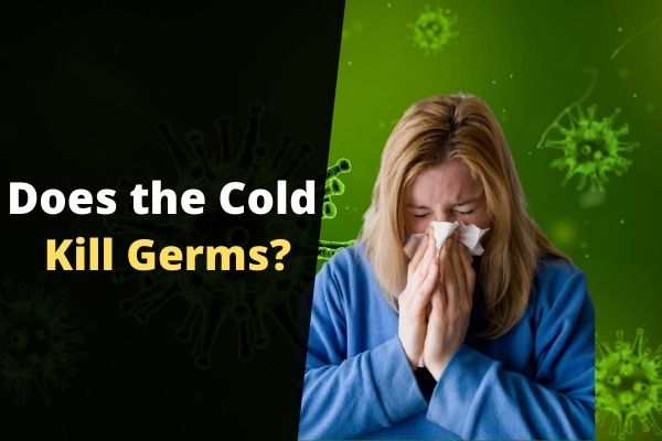 Does the Cold Kill Germs
